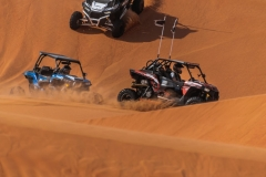 Awesome Desert SAfari Dune Buggy Adventure