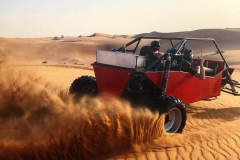 Explore the desert with our custom dune buggies!
