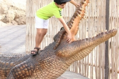 animal safari dubai with Wild Familiy Tour