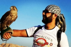 Falcon Guy Dubai