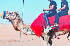 desert safari camel Riding
