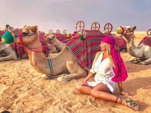 الجمل الرحلات في دبي 2020