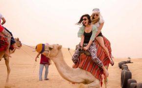 Camel Desert Safarii 290 x180