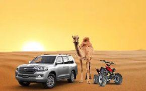 Desert Safarii 290 x 180