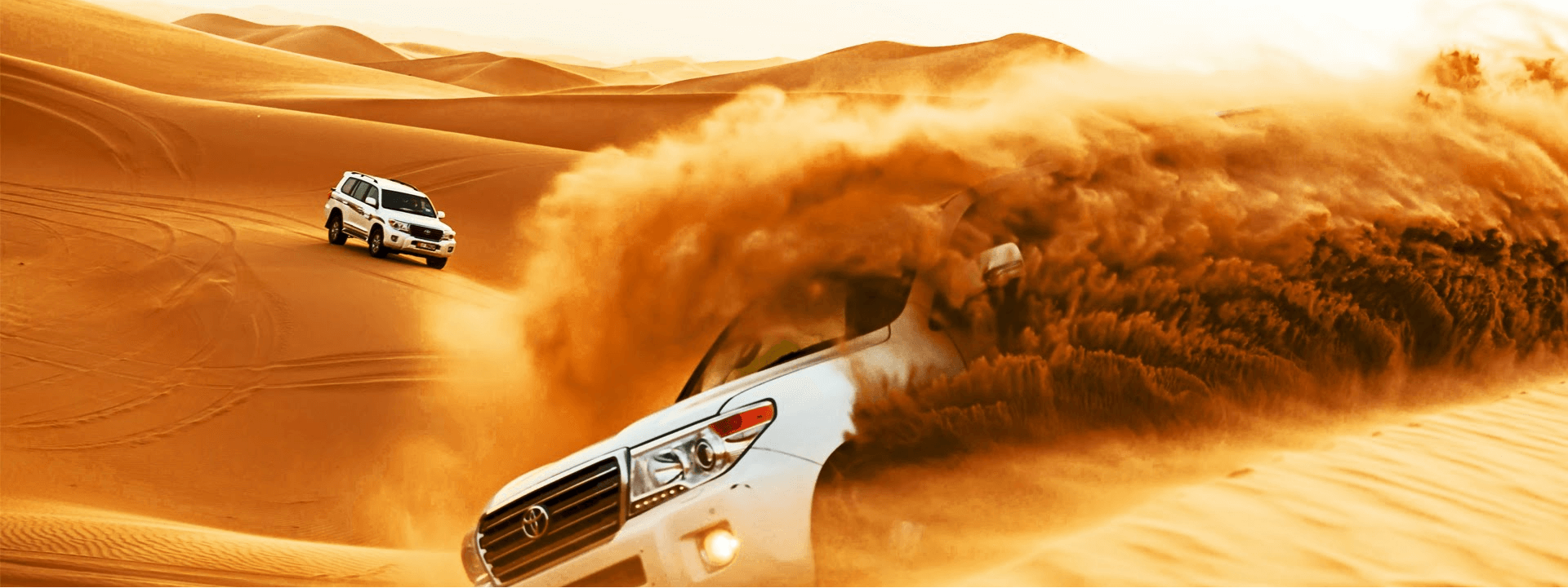 Morning Desert Safari in Dubai Tour