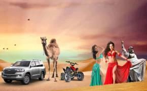 Safari Desert 290 x 181